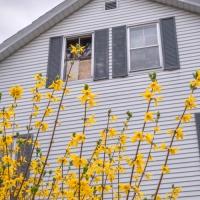 Housing Study #20170420_0036